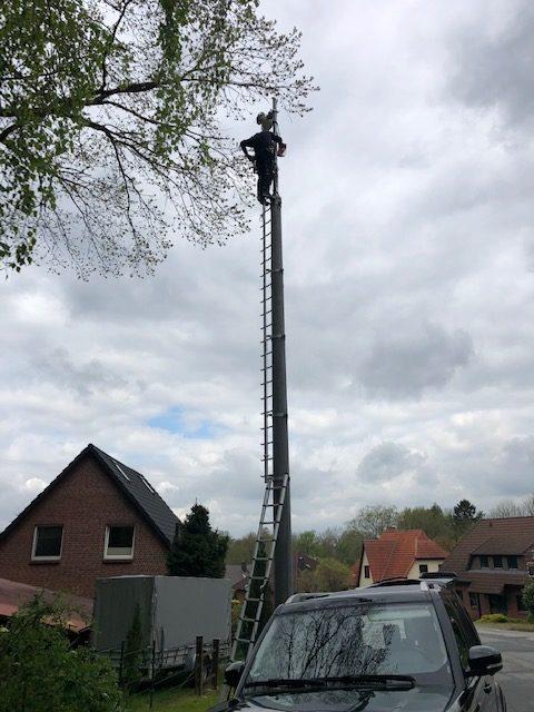 Richtfunkanlage repariert - Kabel wurde von einem Vogel gelockert